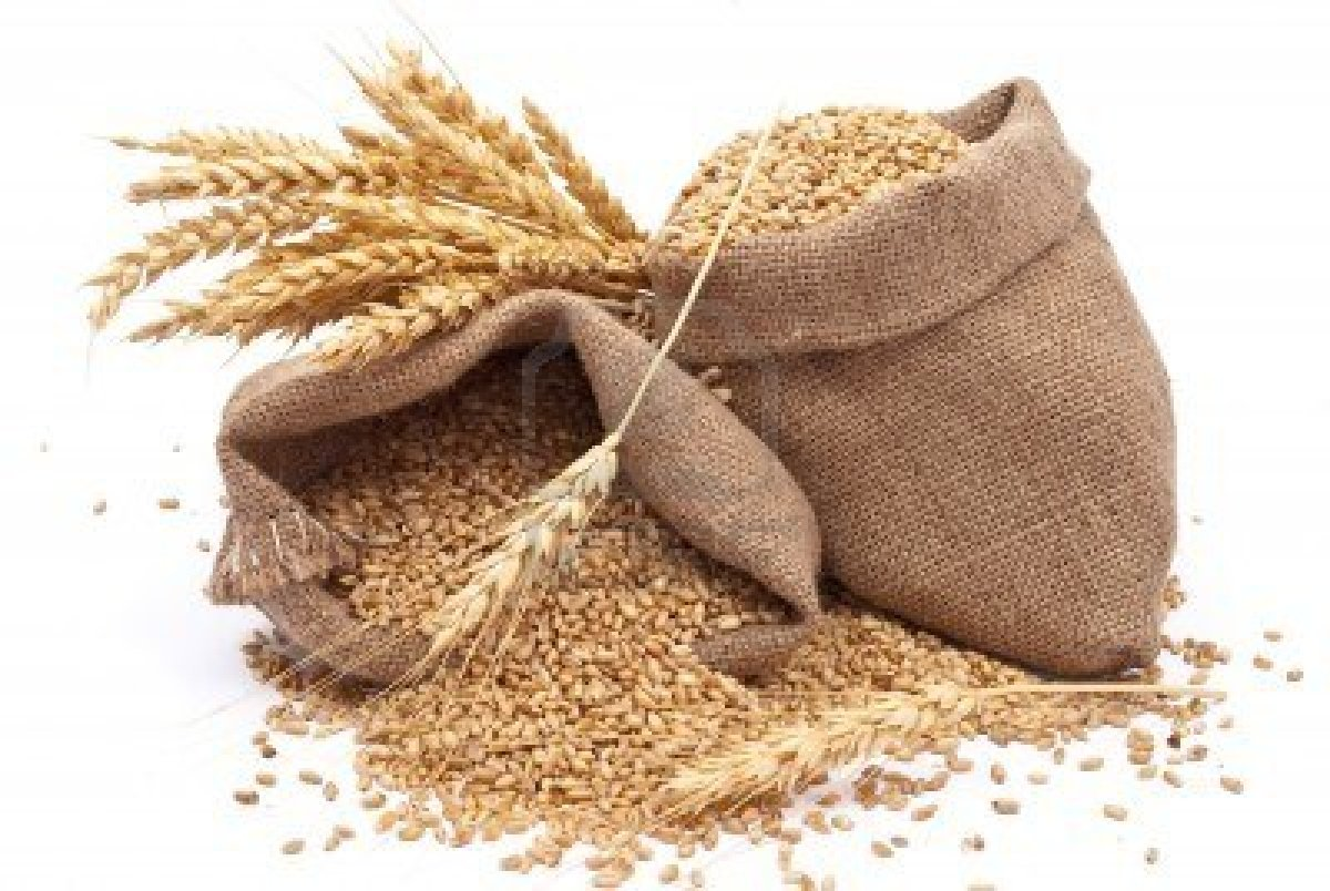 8378327-sacks-of-wheat-grains