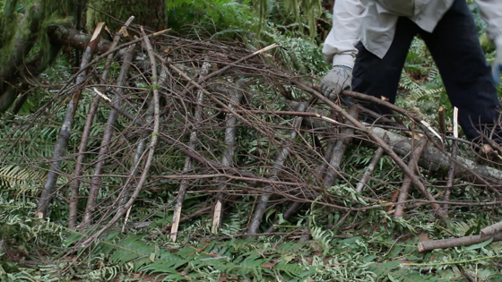 How-to-build-a-survival-shelter-small-branches